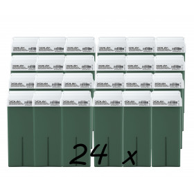 Pack 24 x Roll On Cera 100ml - Aloe Vera