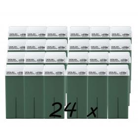 Pack 24 x Roll On Cera 100ml - Aloe Vera